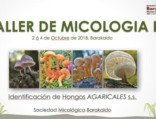 Taller  de Micología